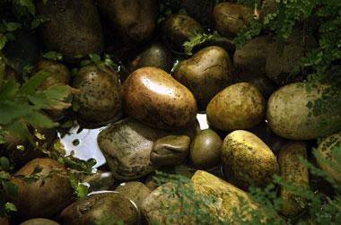 kew-stones-zen